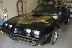 79 TransAM graphics package